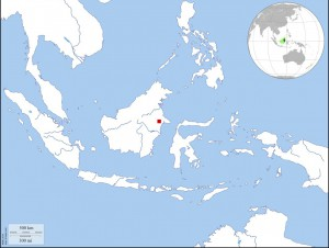 Fieldwork location in Indonesia