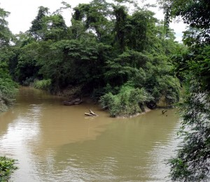 Aux confluent de la Mauau et de la Jelai