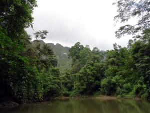 Karst view from the Jelai river